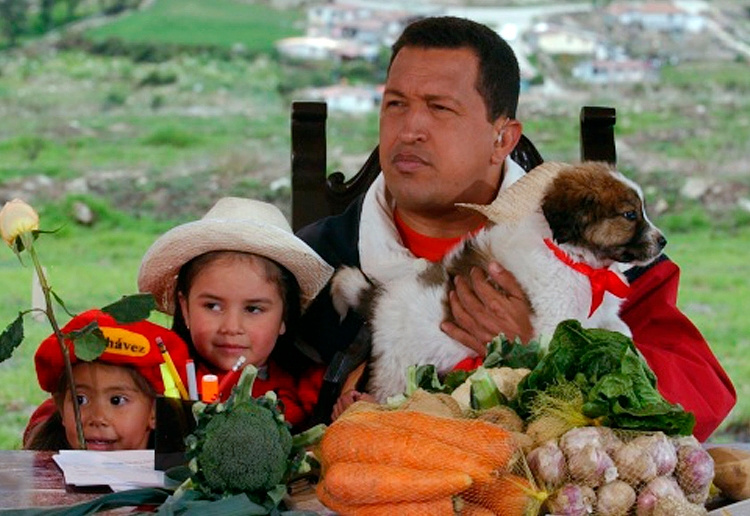 Venezuela's late president Hugo Chavez had a Venezuelan sheepdog. The breed known as mucuchies was rescued from near-extinction and historical oblivion by Chavez