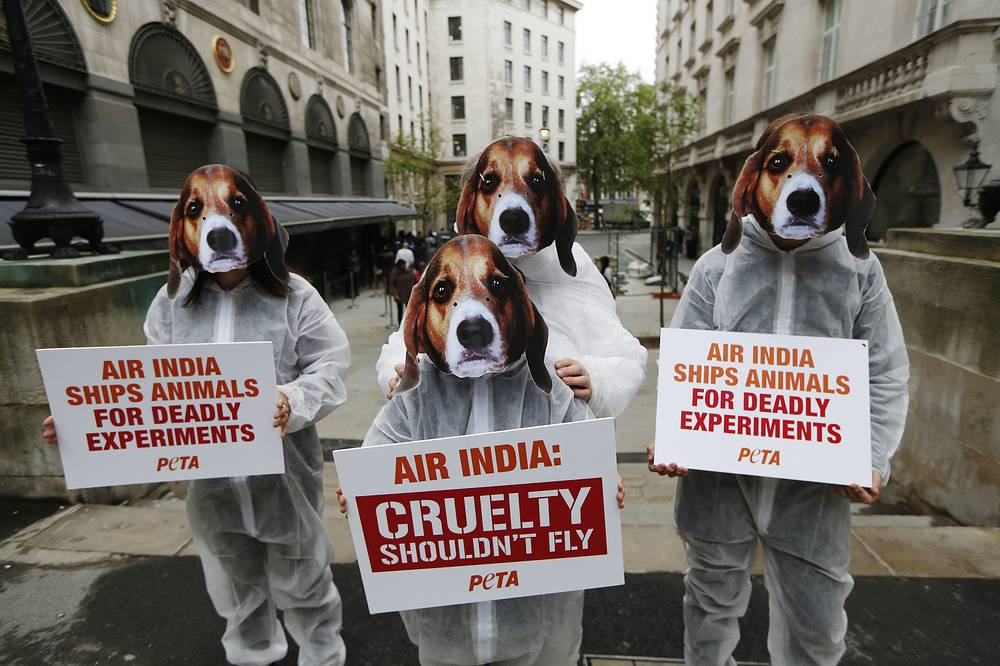 Supporters of PETA, People for the Ethical Treatment of Animals, protest against Air India lifting its ban on transporting animals to laboratories
