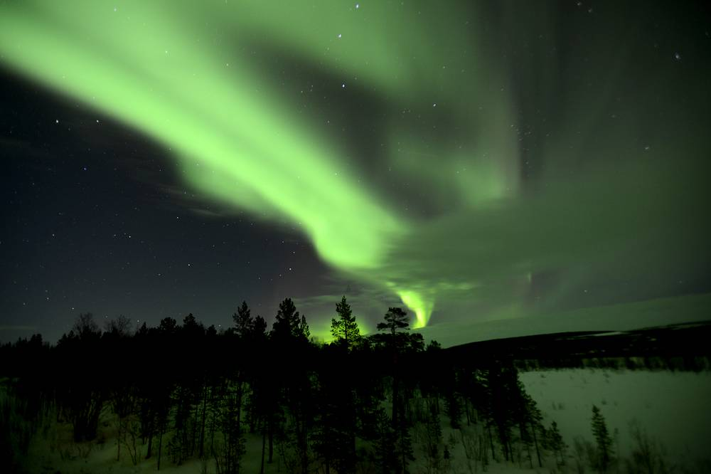 The Northern Lights, or the Aurora Borealis, shining bright over a forest in Murmansk region, March 13, 2015