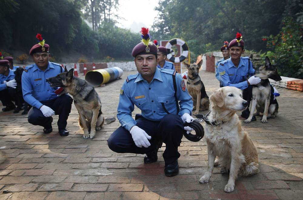 Nepalese policemen with their dogs at the Tihar festival celebrations  in Katmandu, Nepal
