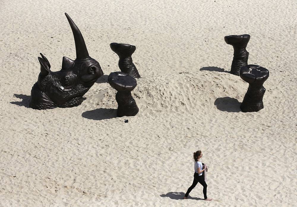 'Buried Rhino' by artists Gillie and Marc Schattner on display as part of the Sculpture By The Sea exhibition in Sydney