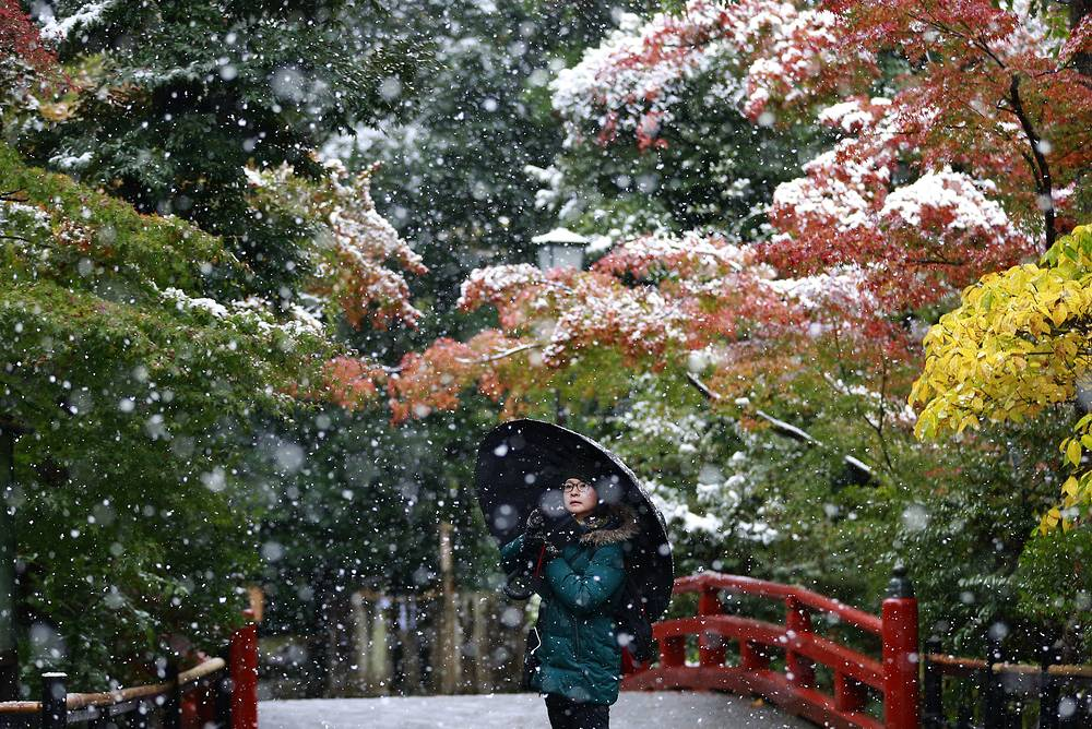 Snow at the Tsurugaoka Hachimangu Shrine in Kamakura, near Tokyo, Japan, November 24