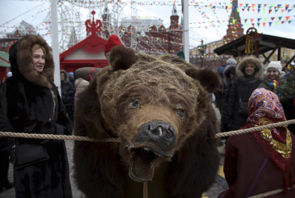 A performer dressed as a bear