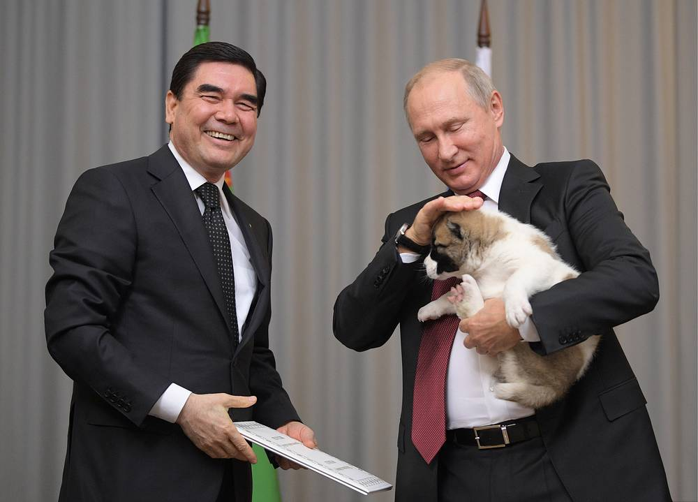 Turkmenistan's President Gurbanguly Berdymukhamedov presents Russian President Vladimir Putin with a puppy as a gift during a meeting in Sochi, Russia, October 11