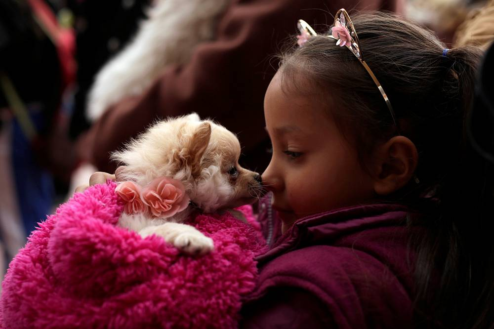 A girl cuddles with her pet while waiting for a blessing from a priest on the day of Saint Anthony, the patron saint of domestic animals, in Ciudad Juarez, Mexico, January 17