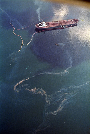 As a result of the spill, over 300 kilometers of coastline were covered with oil. Fishing ceased for several years in the Prince William Sound