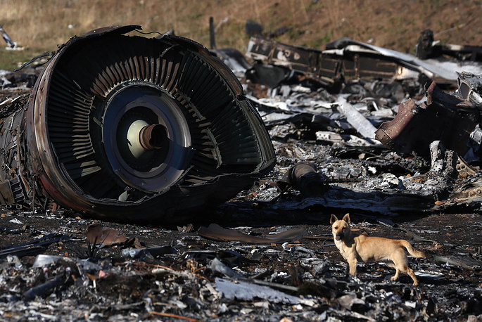 Photo: The wreckage of the Malaysia Airlines Flight MH17 that crashed near the village of Hrabove on July 17, 2014