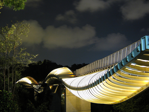 Henderson Wave bridge in Singapore is located 36 metres above ground and is the highest pedestrian bridge in the city