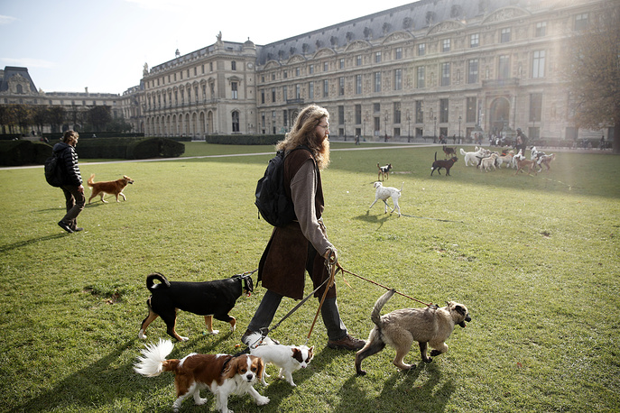 Dog walkers meets with counterparts by the Invalides garden in Paris, France, November 16