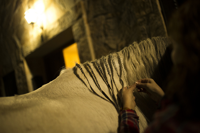 A woman braids the hair of a horse before the ritual in honor of Saint Anthony the Abbot in San Bartolome de Pinares