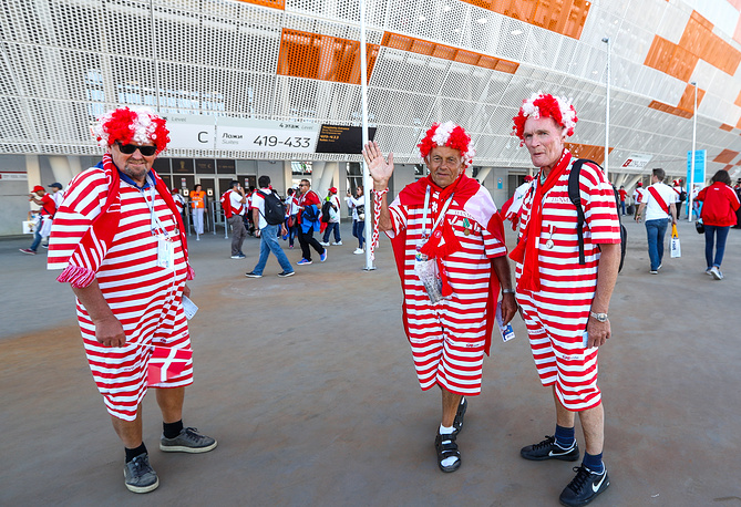 Supporters of the Danish football team