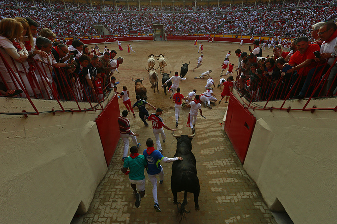 Revellers run next to fighting bulls from the Fuente de Ymbro bull ranch as they enter the bullring during 4th day of the running of the bulls in Pamplona