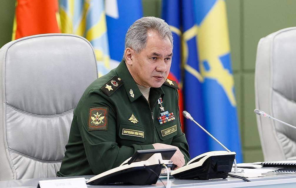 Russia's Defence Minister Sergei Shoigu  Vadim Savitsky/Russian Defence Ministry Press Office/TASS