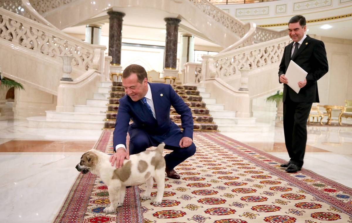 This week in photos: Lavrov's umbrella protection, Medvedev's pup and hot potato for Trump