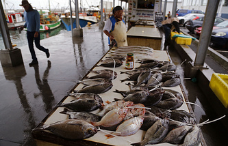 Sea fish sold in Cape Town, South Africa