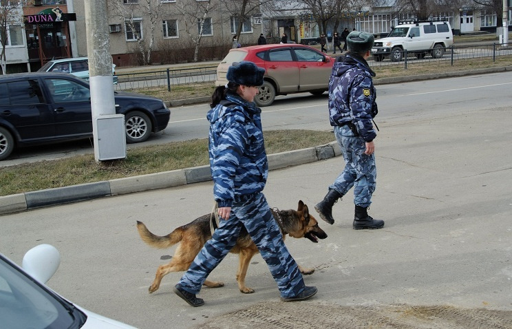 Law enforcement officers of the Stavropol Territory