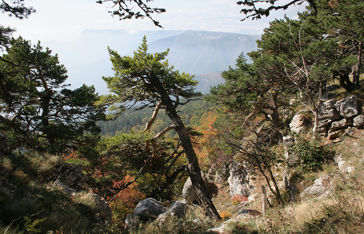 A nature reserve in Crimea (archive)