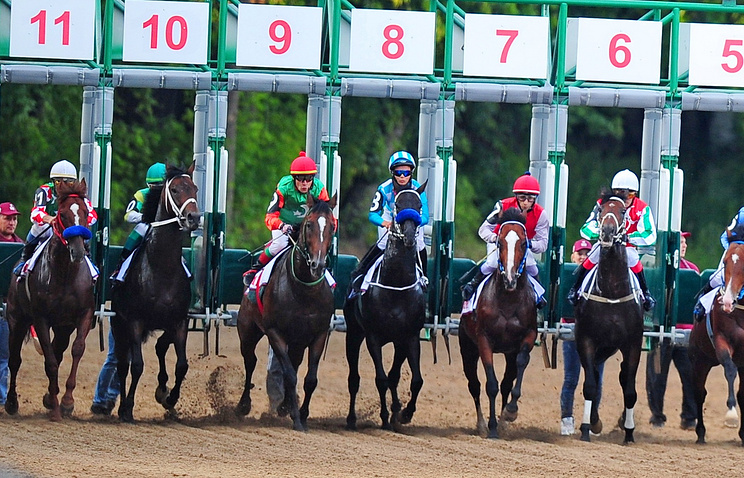 Horse race at Moscow racecourse (archive)